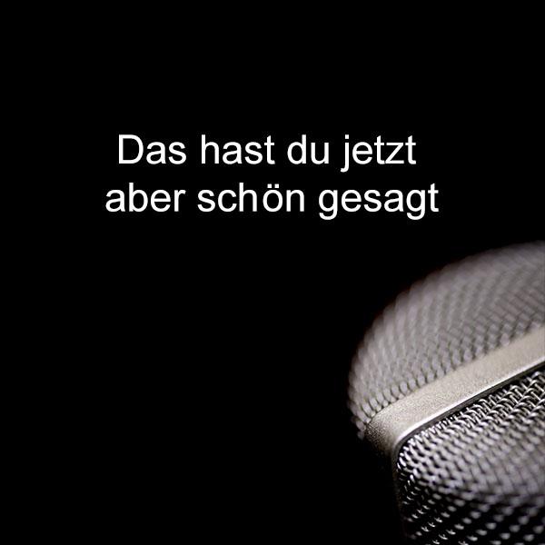 Sprache und Stimme Micro